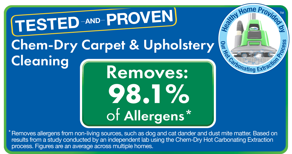 Chem-Dry removes allergens and bacteria in upholstery