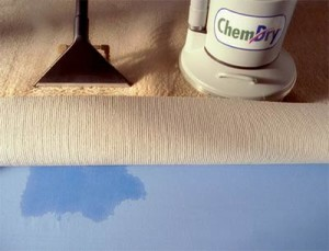 steam cleaning vs chemdry