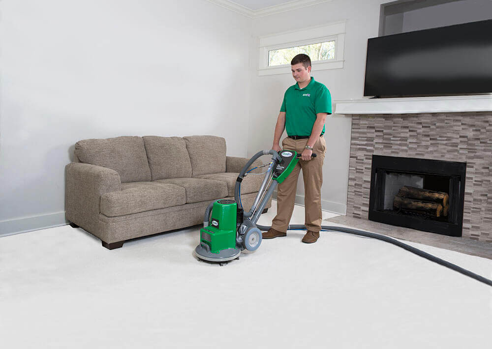 carpet cleaning in ferndale