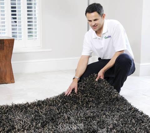 area rug care whatcom county
