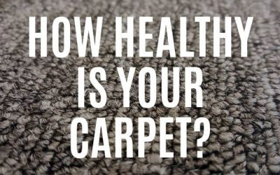 How Healthy is Your Carpet?