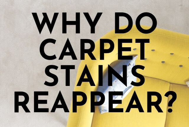 Why Do Carpet Stains Reappear?