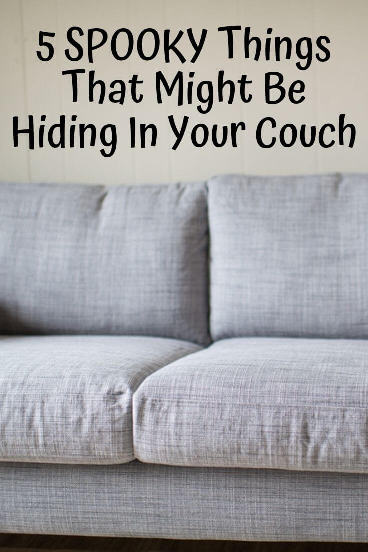 5 SPOOKY Things That Might Be Hiding In Your Couch