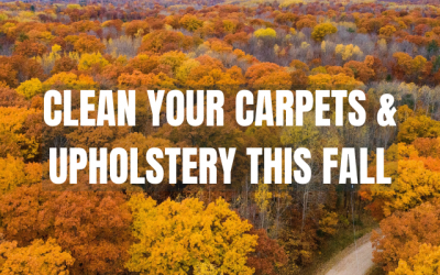 Clean Your Carpet & Upholstery This Fall
