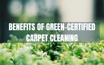Benefits of Green Carpet Cleaners in Bellingham