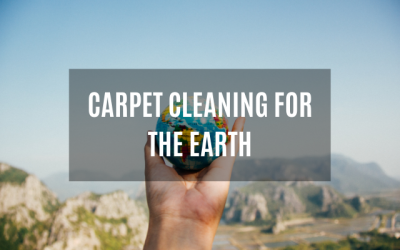 Carpet Cleaning For The Earth